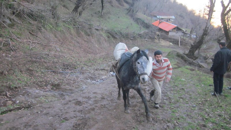 روستای ریزه مندان ماسال